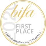 bifa_seal